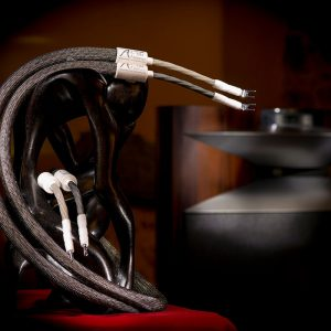 Câbles enceintes Absolue Création TIM Référence
